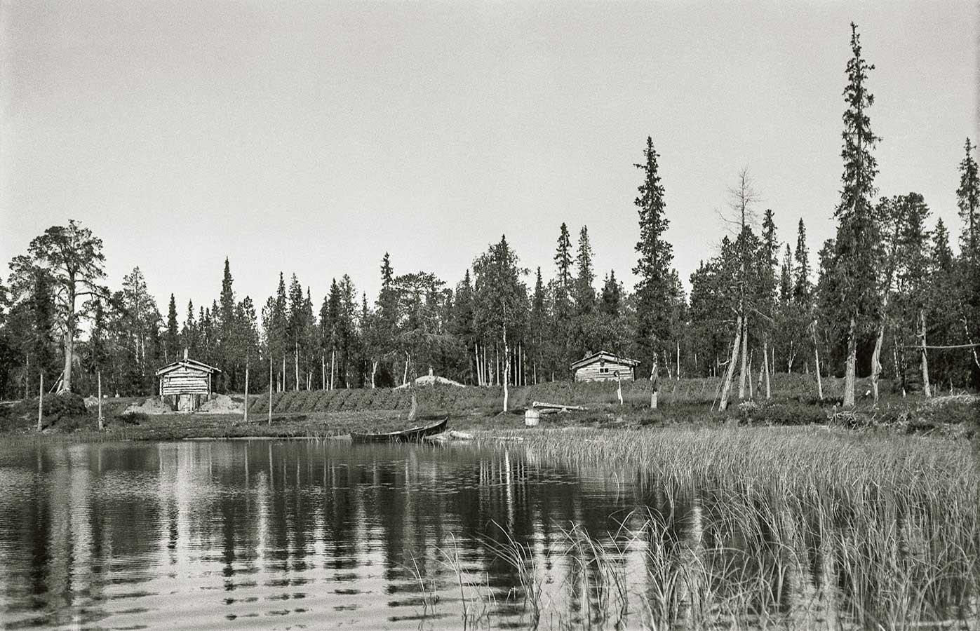 suojeltujen metsien määrä suomessa